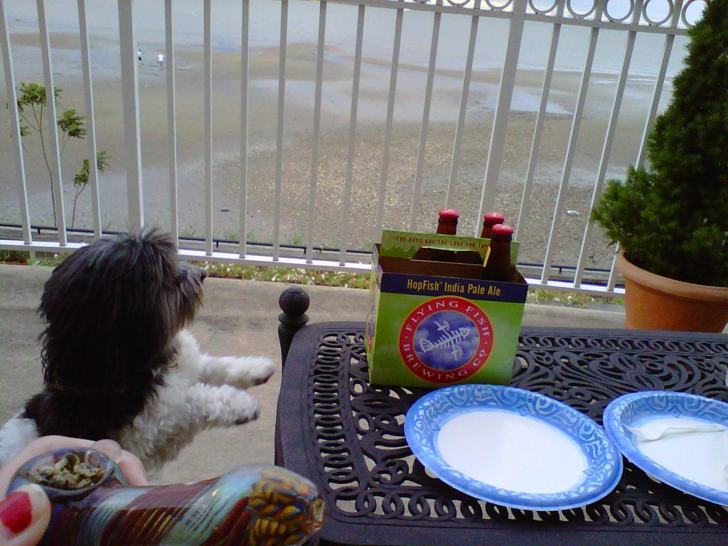 dog bowl weed beer